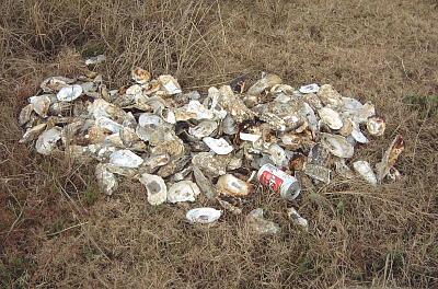 捨てられた貝殻プラス空き缶1個