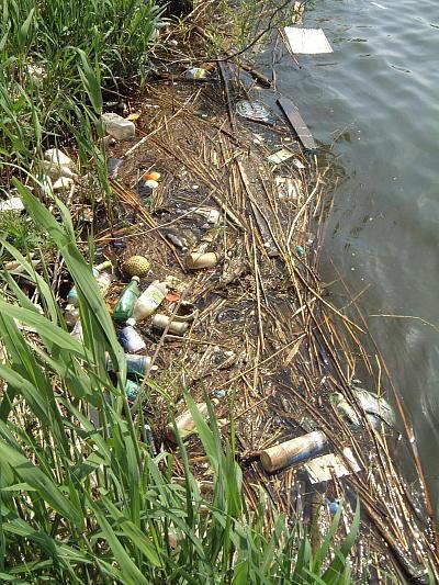 親水公園の漂着ゴミ