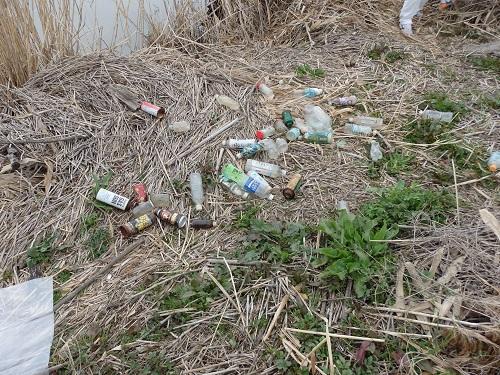 集めた空き缶やペットボトル
